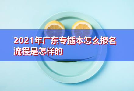 2021年广东专插本怎么报名 流程是怎样的