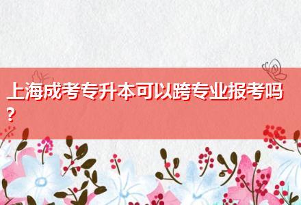 上海成考专升本可以跨专业报考吗?