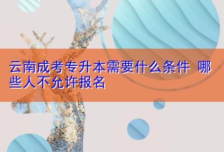 云南成考专升本需要什么条件 哪些人不允许报名