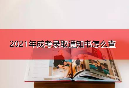 2021年成考录取通知书怎么查