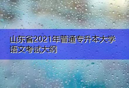 山东省2021年普通专升本大学语文考试大纲