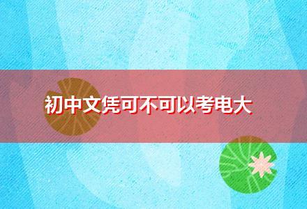 初中文凭可不可以考电大