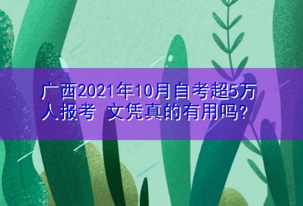 广西2021年10月自考超5万人报考 文凭真的有用吗?