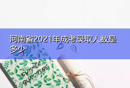 河南省2021年成考录取人数是多少