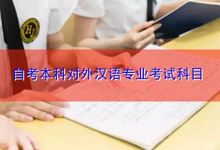 自考本科对外汉语专业考试科目