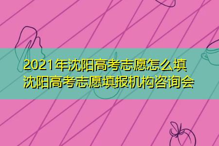2021年沈阳高考志愿怎么填 沈阳高考志愿填报机构咨询会