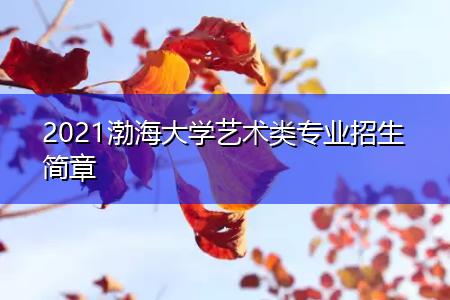 2021渤海大学艺术类专业招生简章