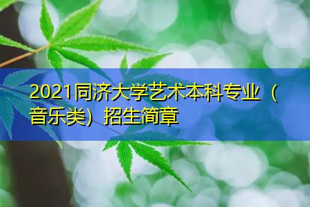 2021同济大学艺术本科专业(音乐类)招生简章